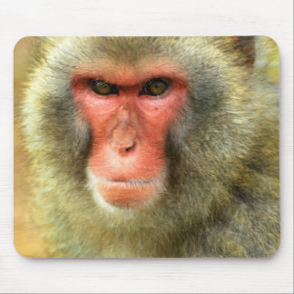 Snow Monkey Mousepad