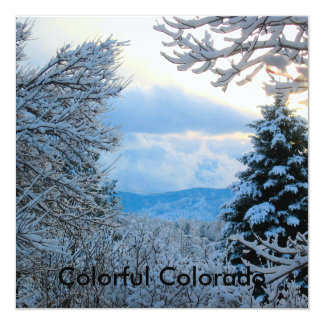 """Snow on Pine Trees in Colorado Rocky Mountains 5.25"""" Square Invitation Card"""