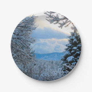 Snow on Pine Trees in Colorado Rocky Mountains Paper Plate
