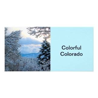 Snow on Pine Trees in Colorado Rocky Mountains Photo Greeting Card