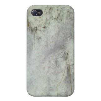 Snow on the Ground Case For The iPhone 4