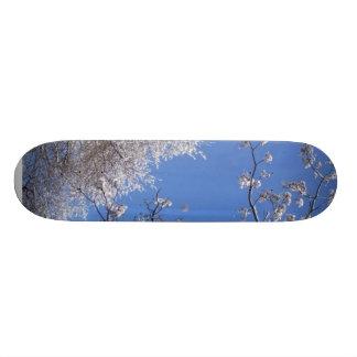 Snow on trees skate board decks
