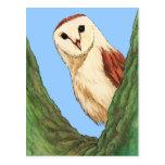 snow owl animal postcard