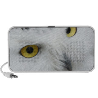 Snow Owl Eyes Notebook Speaker