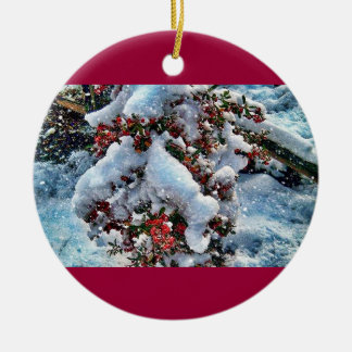 Snow  pictures on an orniment christmas ornament