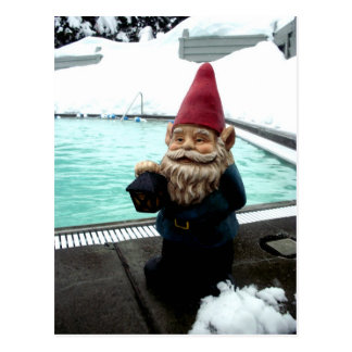 Snow Pool Gnome Postcard