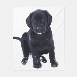 Snow Puppy - Black Labrador Fleece Blanket
