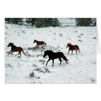 Snow Run Greeting Card