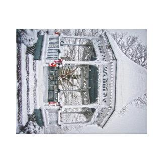 Snow Scene on Canvas Canvas Print