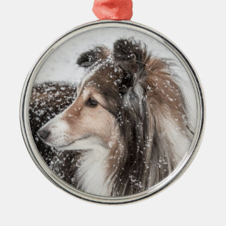 Snow Sheltie Christmas Ornament