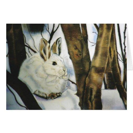 """Snow Shoe Hare"" Card"