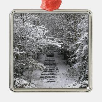 Snow steps christmas ornament