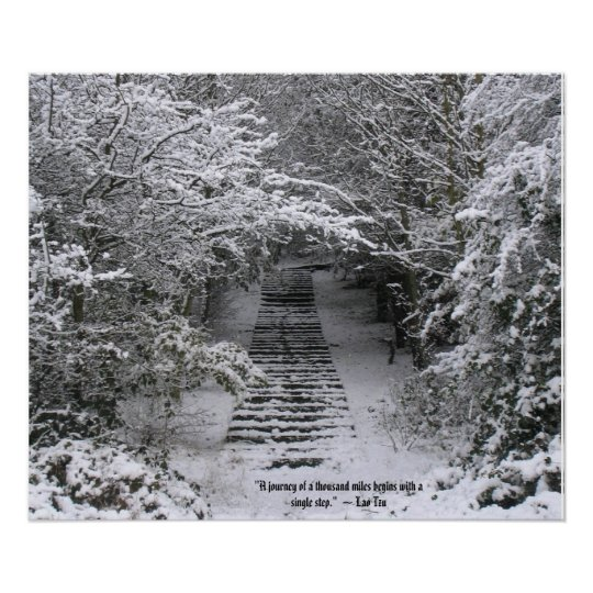 Snow steps poster