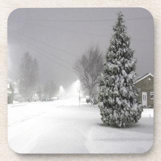Snow Storm Coaster
