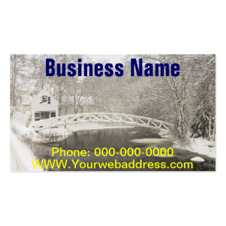 Snow Storm In Somesville Maine Business Card