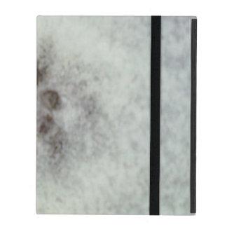 snow track iPad cases