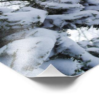 Snow Tree Photo Print