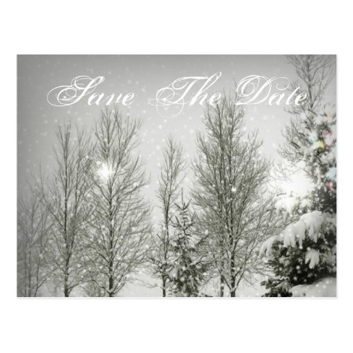 Snow Trees Sparkle Winter Wedding SaveTheDate Post Cards