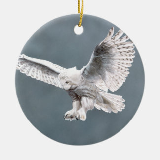 Snow wings ornament