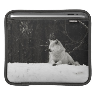 Snow Wolf iPad Sleeve