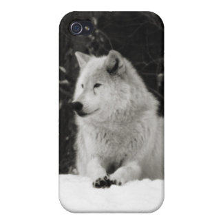 Snow Wolf iPhone 4/4S Cases