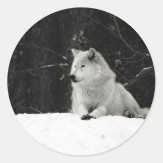 Snow Wolf Round Stickers