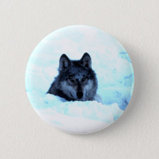 Snow Wolf  Wolves 6 Cm Round Badge