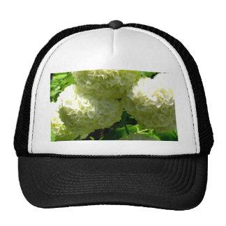 Snowball Bush Blooms Trucker Hat