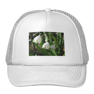 Snowbells Mesh Hats