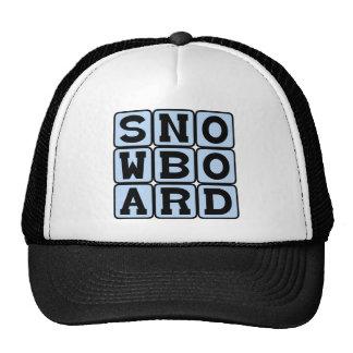 Snowboard Winter Sport Mesh Hat