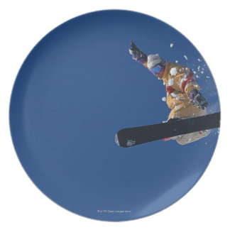 Snowboarding 14 plate