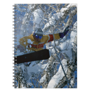 Snowboarding 3 notebooks
