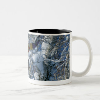 Snowboarding 3 Two-Tone coffee mug
