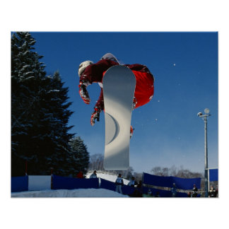 Snowboarding 5 poster