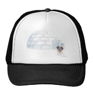 Snowcial Security Cap Trucker Hat