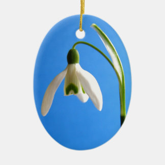 Snowdrop Ceramic Oval Decoration
