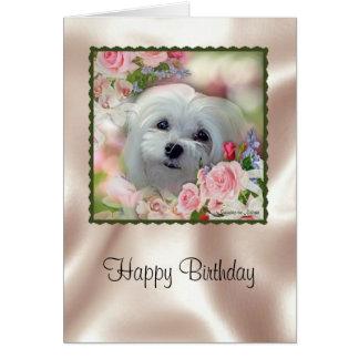 Snowdrop the Maltese Birthday Card