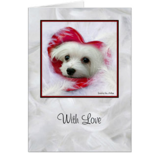 Snowdrop the Maltese Greeting Card (With Love)