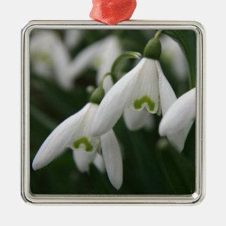 Snowdrops Christmas Ornament