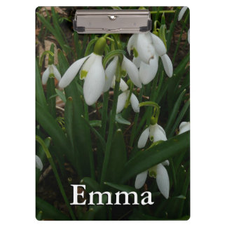 Snowdrops I (Galanthus) White Spring Flowers Clipboards