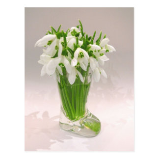 Snowdrops In The Vase Postcards