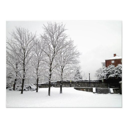 Snowfall in Boston Photo
