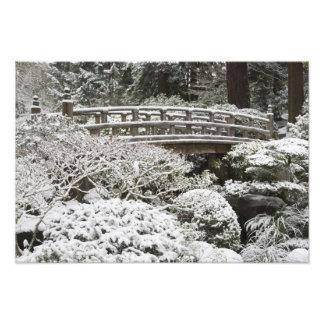 Snowfall in Portland Japanese Garden, Photo