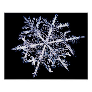 Snowflake 9 poster