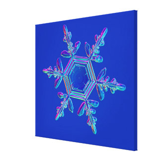 Snowflake Crystal 4 Canvas Print