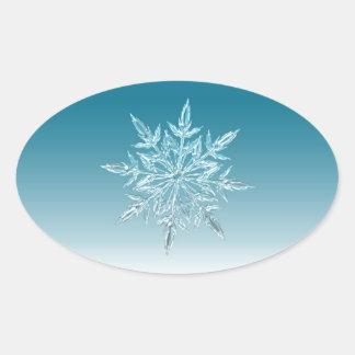 Snowflake Crystal Oval Sticker