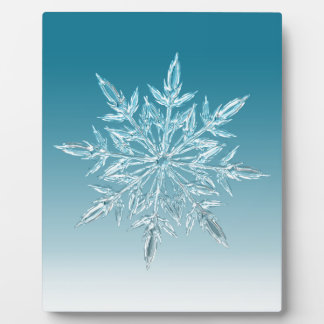 Snowflake Crystal Plaque
