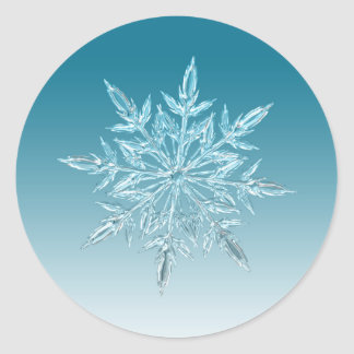 Snowflake Crystal Round Sticker