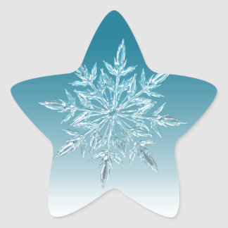 Snowflake Crystal Star Sticker