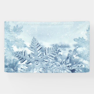 Snowflake Crystals Banner